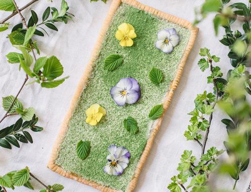 Yeşil Çam Tartı